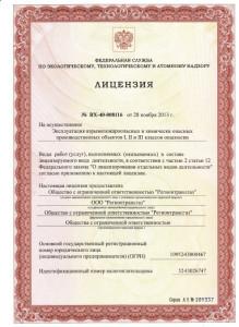 Лицензия 1л