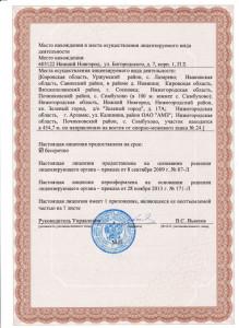 Лицензия 2л